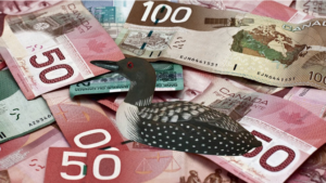 Why do Canadians use Loonies?