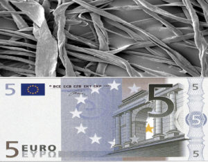 "Why Is The Euro Called the ""Fiber""?"